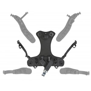 Outlaw BC Back Assembly